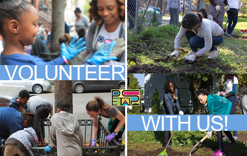 Volunteer With Us banner; volunteers get involved at NYC neighborhood park project petals
